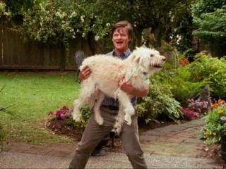 Zachary gordon dog days