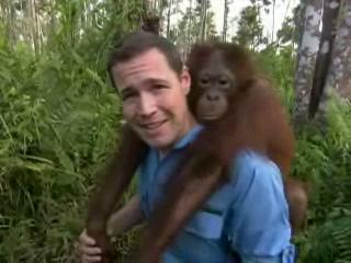 The Jeff Corwin Experience: Out On A Limb Scene: That's A Strong Orangutan