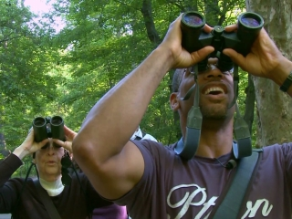 Birders The Central Park Effect