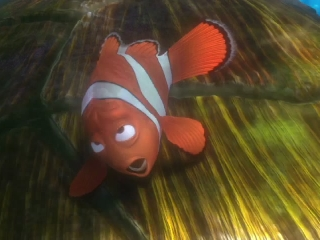 Finding Nemo Uk