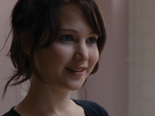 SILVER LININGS PLAYBOOK (GERMAN)
