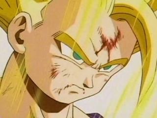 Dragon Ball Z: Cell Games-Sacrifice