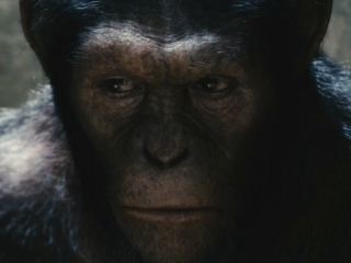 RISE OF THE PLANET OF THE APES (RUSSIAN TRAILER 2)