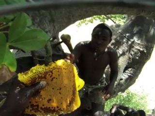 The Hadza Last Of The First