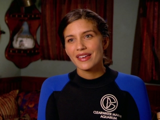 Dolphin Tale 2: Juliana Harkavy On What Was So Special About The First Movie