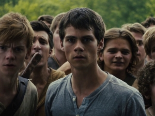 The Maze Runner: Good Job