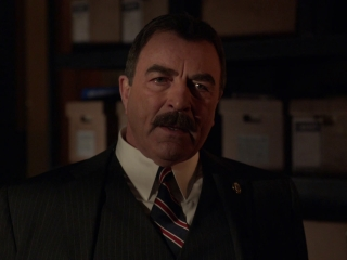 Blue Bloods: Excessive Force