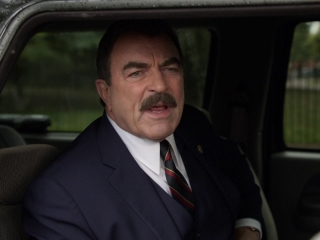 Blue Bloods: Most Wanted