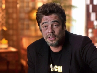 Inherent Vice: Benicio Del Toro On The Novel