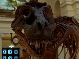 Dinosaur 13 (Trailer 1)