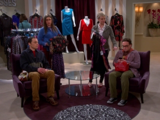 The Big Bang Theory: The Space Probe Disintegration
