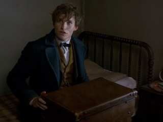 Fantastic Beasts And Where To Find Them (Trailer 1)