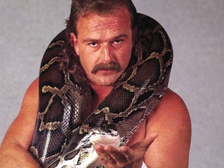 Resurrection Of Jake The Snake Roberts