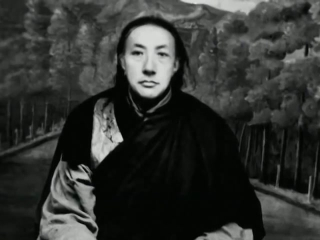 Brilliant Moon Glimpses Of Dilgo Khyentse Rinpoche