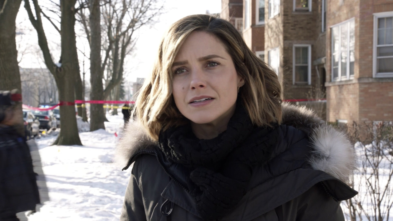 Chicago P.D.: The Song Of Gregory Williams Yates