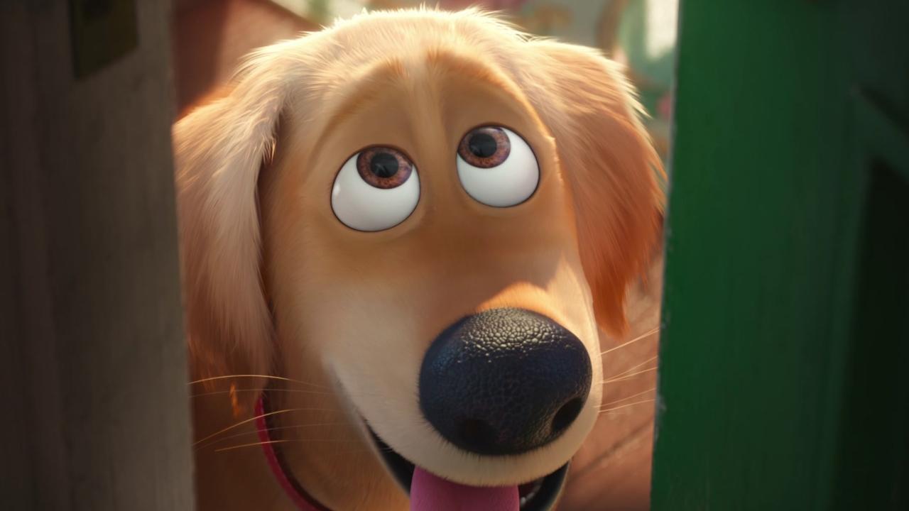 The Secret Life Of Pets: Wild Love TV Spot (International)