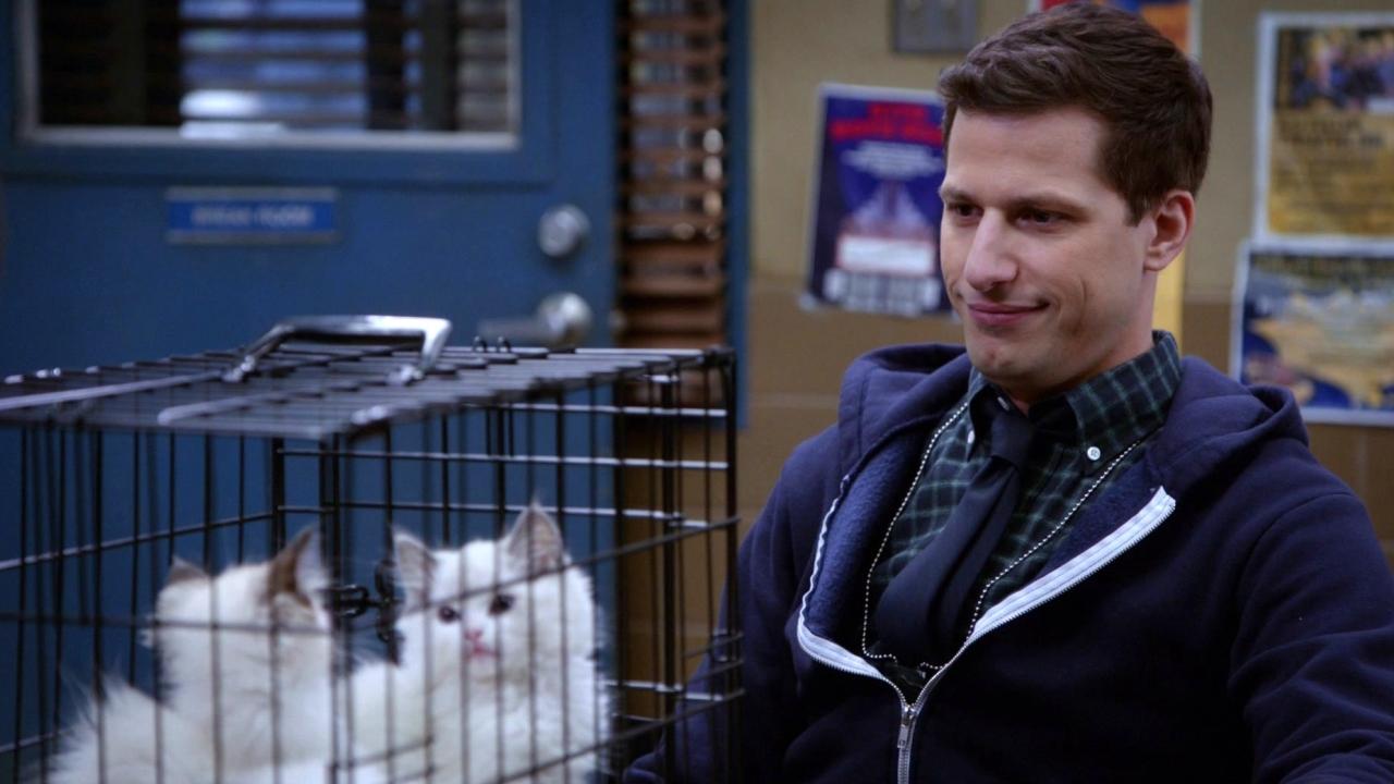 Brooklyn Nine-Nine: Terry Kitties