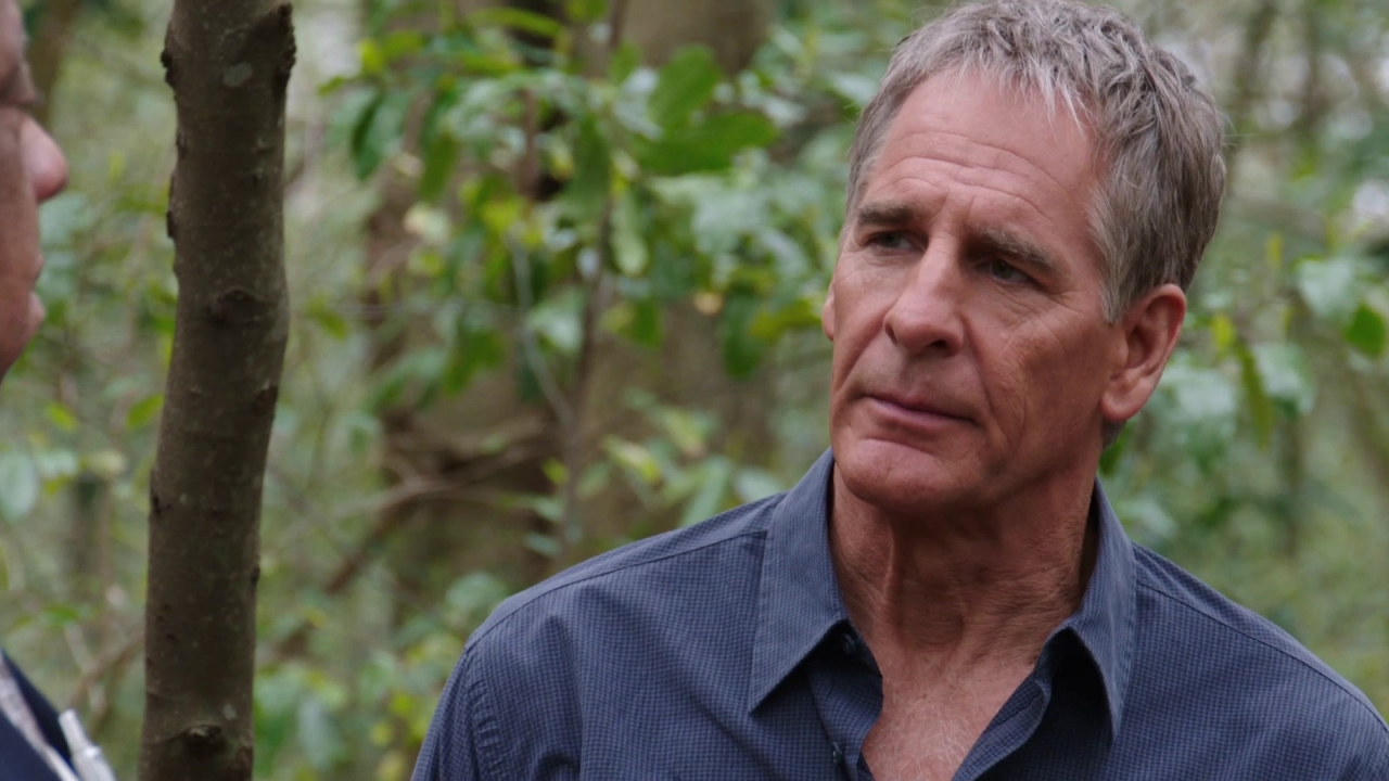 Ncis: New Orleans: Graduated To Assault