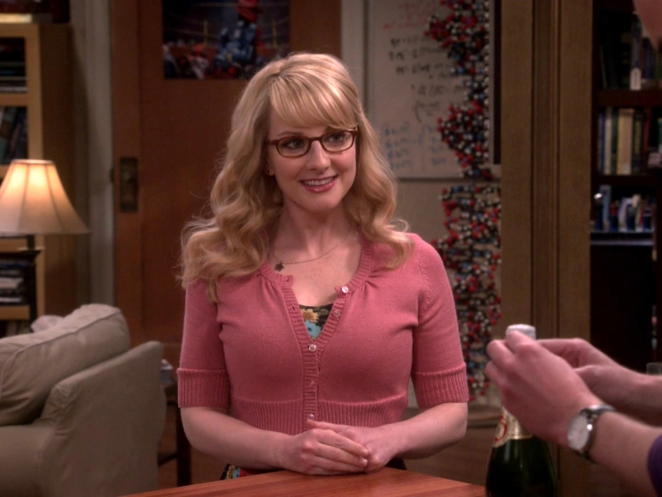 The Big Bang Theory: Fetus Friendly Festival Of Fun