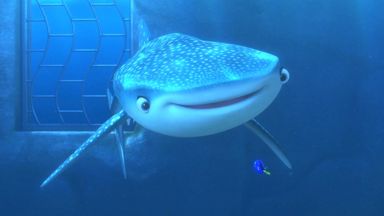 Finding Dory: You're A Beluga