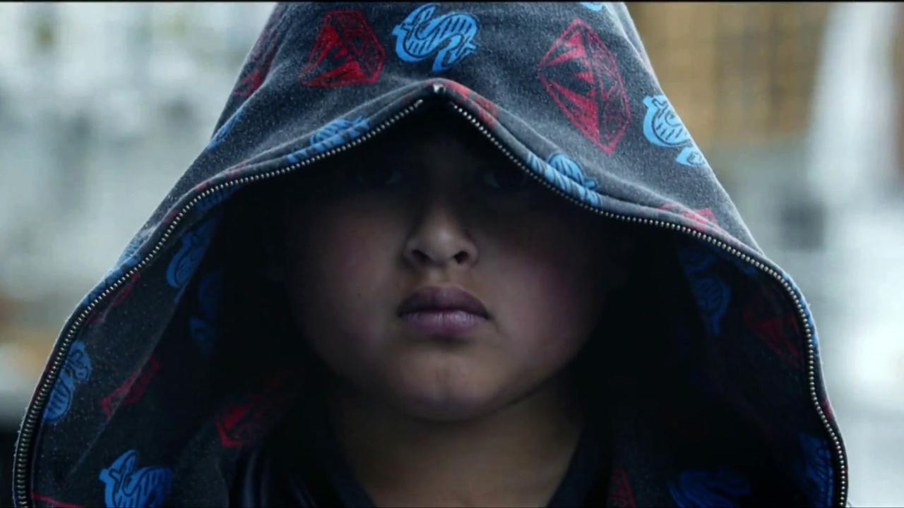 Hunt For The Wilderpeople (International Trailer)