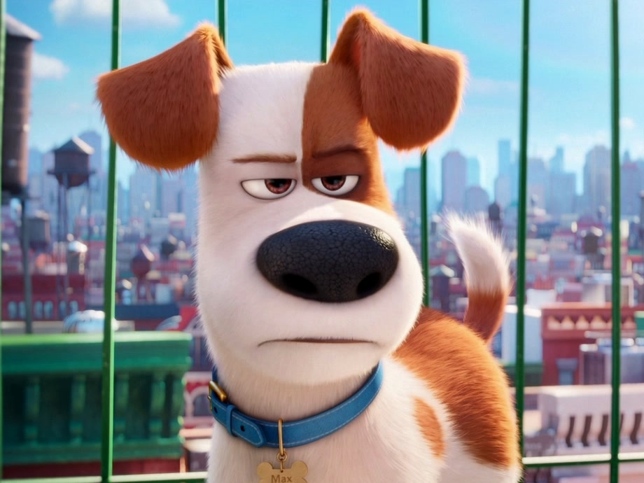 The Secret Life Of Pets: I Don't Want A Brother