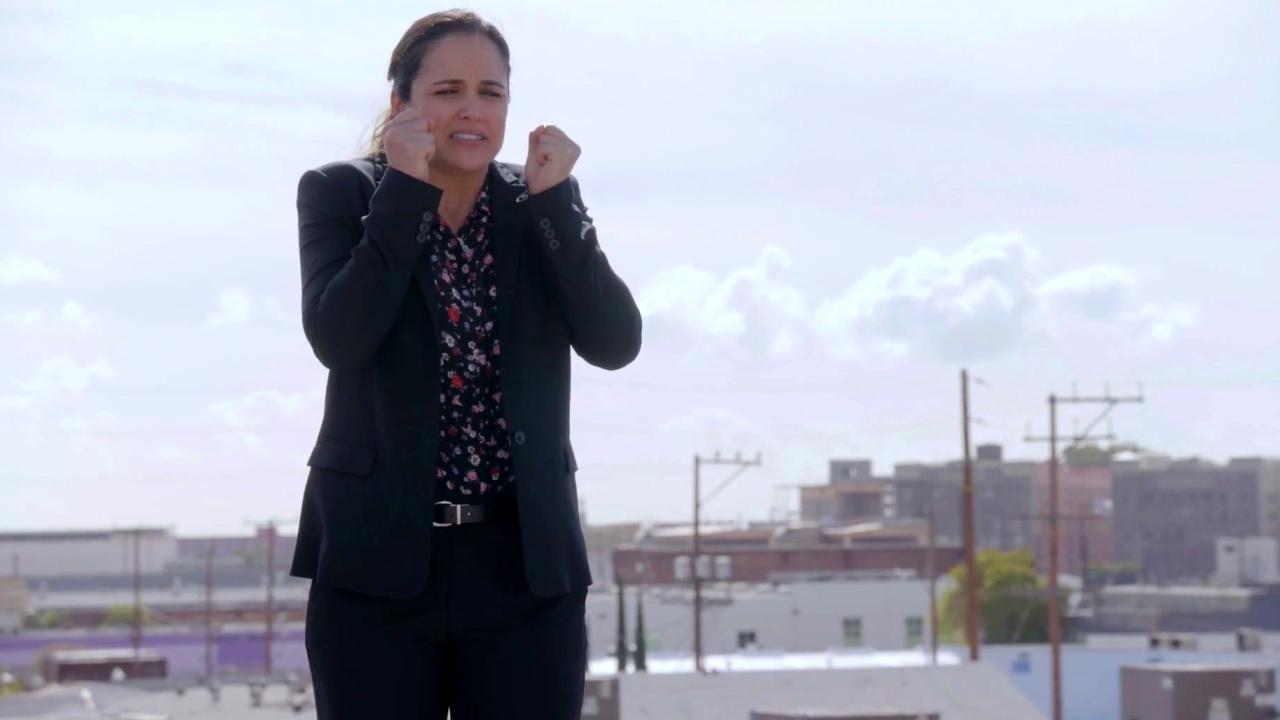 Brooklyn Nine-Nine: The Audit