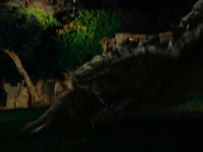 Dragon Wars: D-War (Clip 1: Zoo)