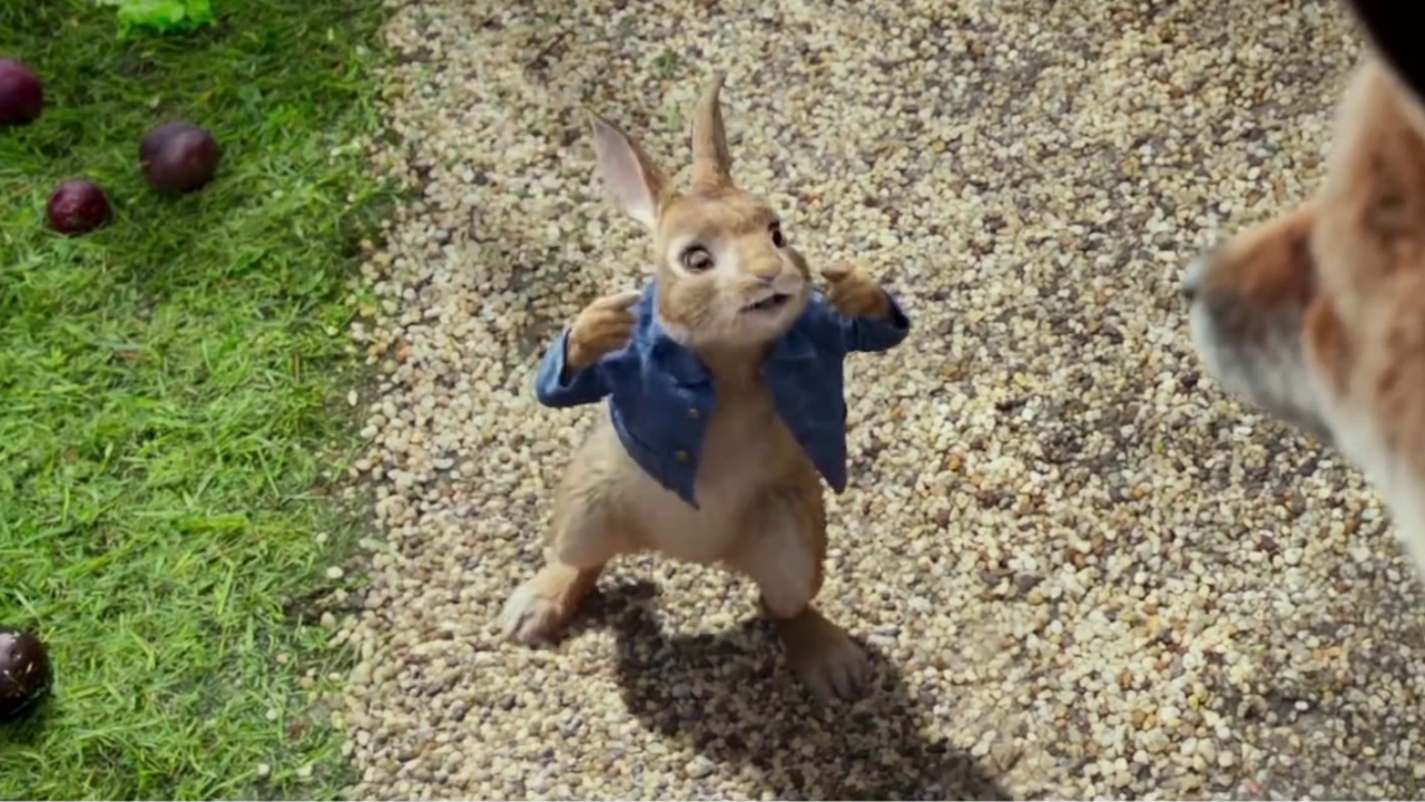 Peter Rabbit: Hero (TV Spot)