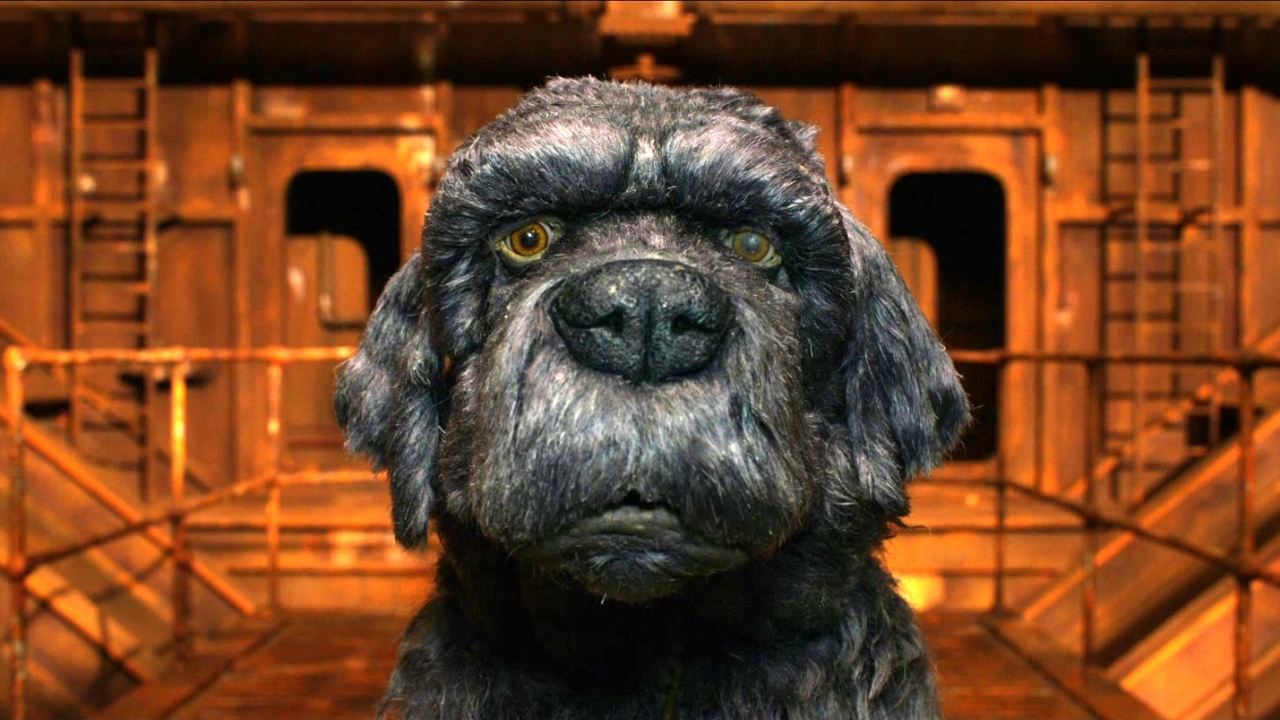 Isle Of Dogs: Dog Zero