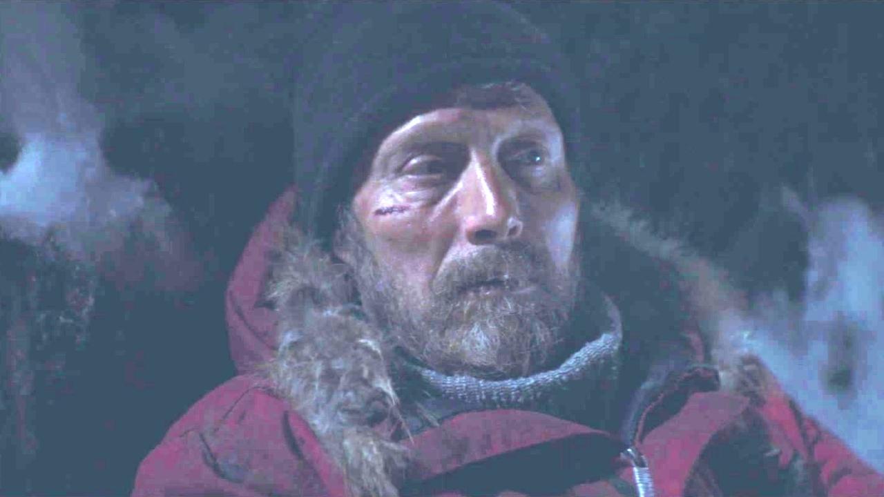 Arctic: Visitor