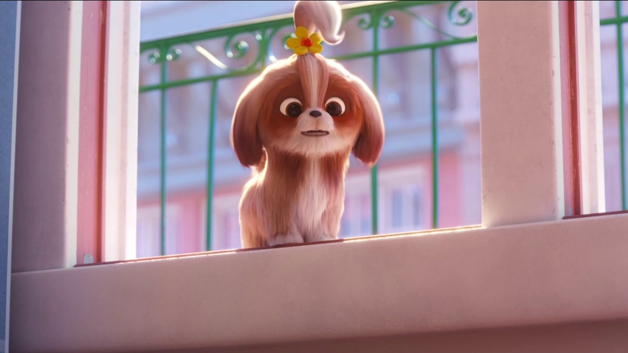The Secret Life Of Pets 2: Daisy Asks Chloe And Snowball For Help