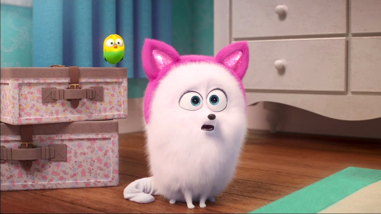 The Secret Life Of Pets 2: Gidget Gets Lessons From Chloe On The Litter Box And Food