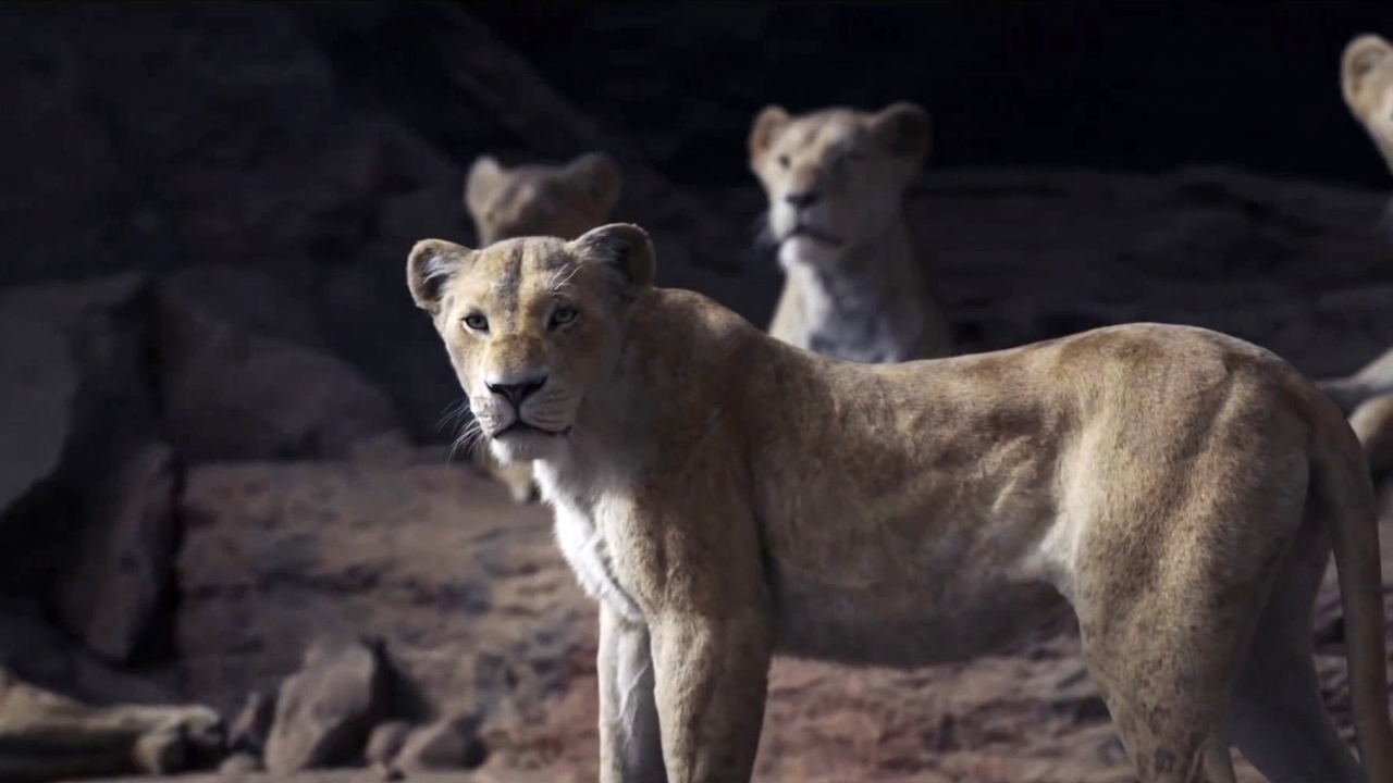 The Lion King: Protect The Pride (PSA)