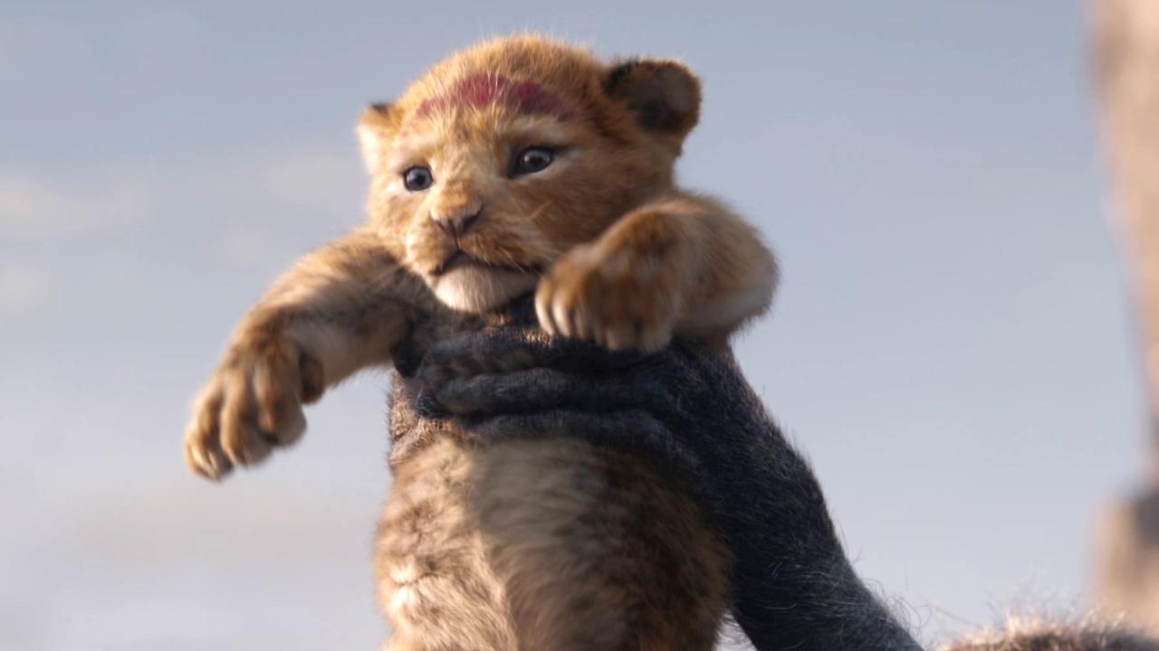 The Lion King: Kingdom (TV Spot)