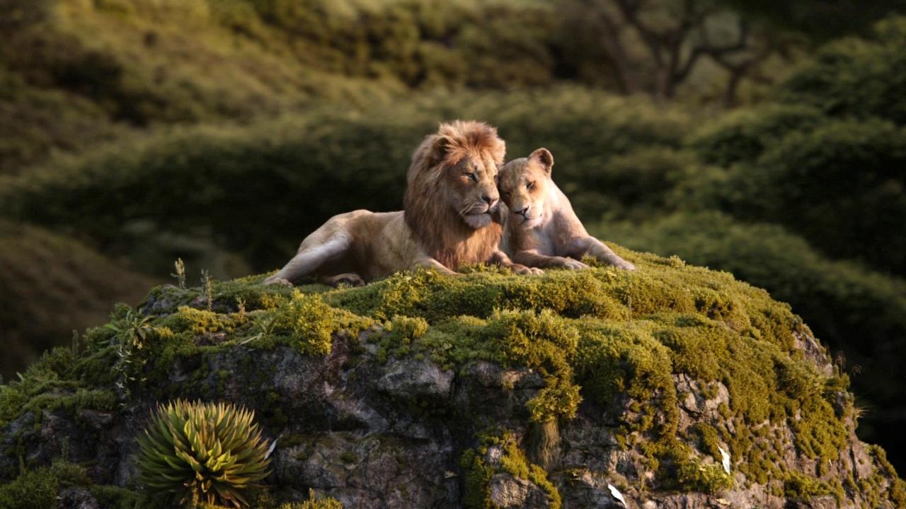 The Lion King: Love (TV Spot)