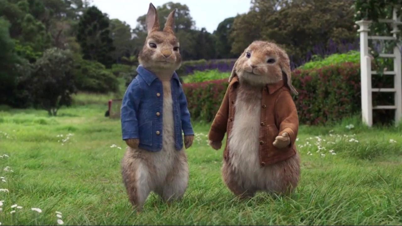 Peter Rabbit 2: The Runaway (International Teaser Trailer 1)