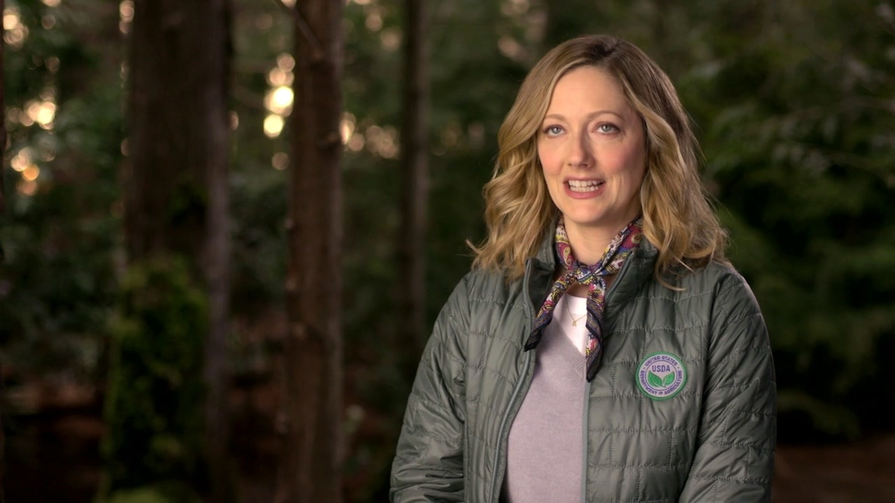 Playing With Fire: Judy Greer On The Tone Of The Movie