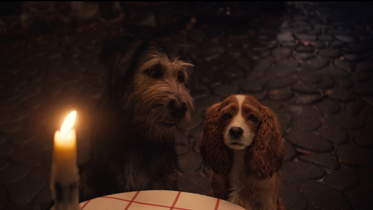 Lady And The Tramp: Tony's Special