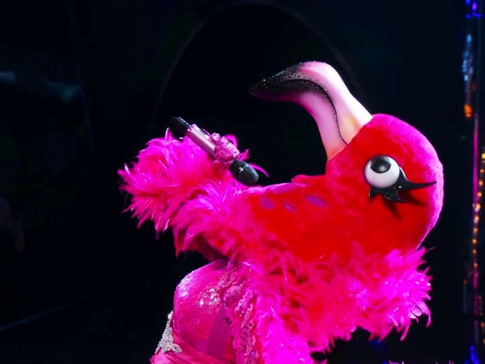 The Masked Singer: Flamingo Performs Never Enough