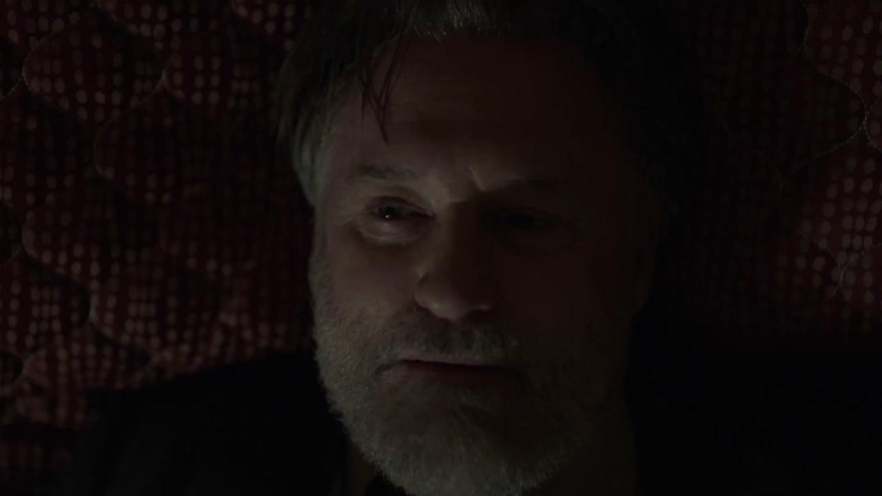 The Sinner: Did Vera Hypnotize Ambrose?