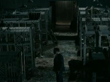 Oss 117: Cairo, Nest Of Spies (Scene 4)