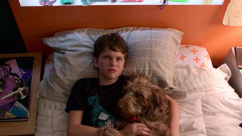Think Like a Dog: Best Friends