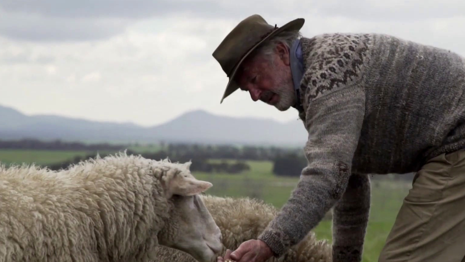 Rams: The Good & The Baaaahd Of Working With Sheep (Featurette)