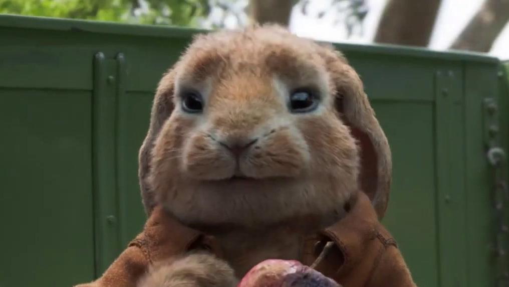 Peter Rabbit 2: The Runaway (Australia Trailer 1)