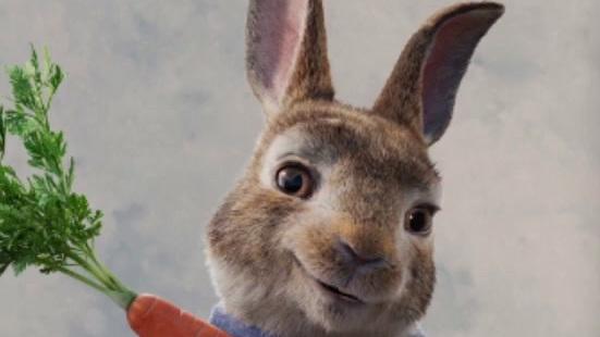 Peter Rabbit 2: The Runaway (New Zealand Spot 1)