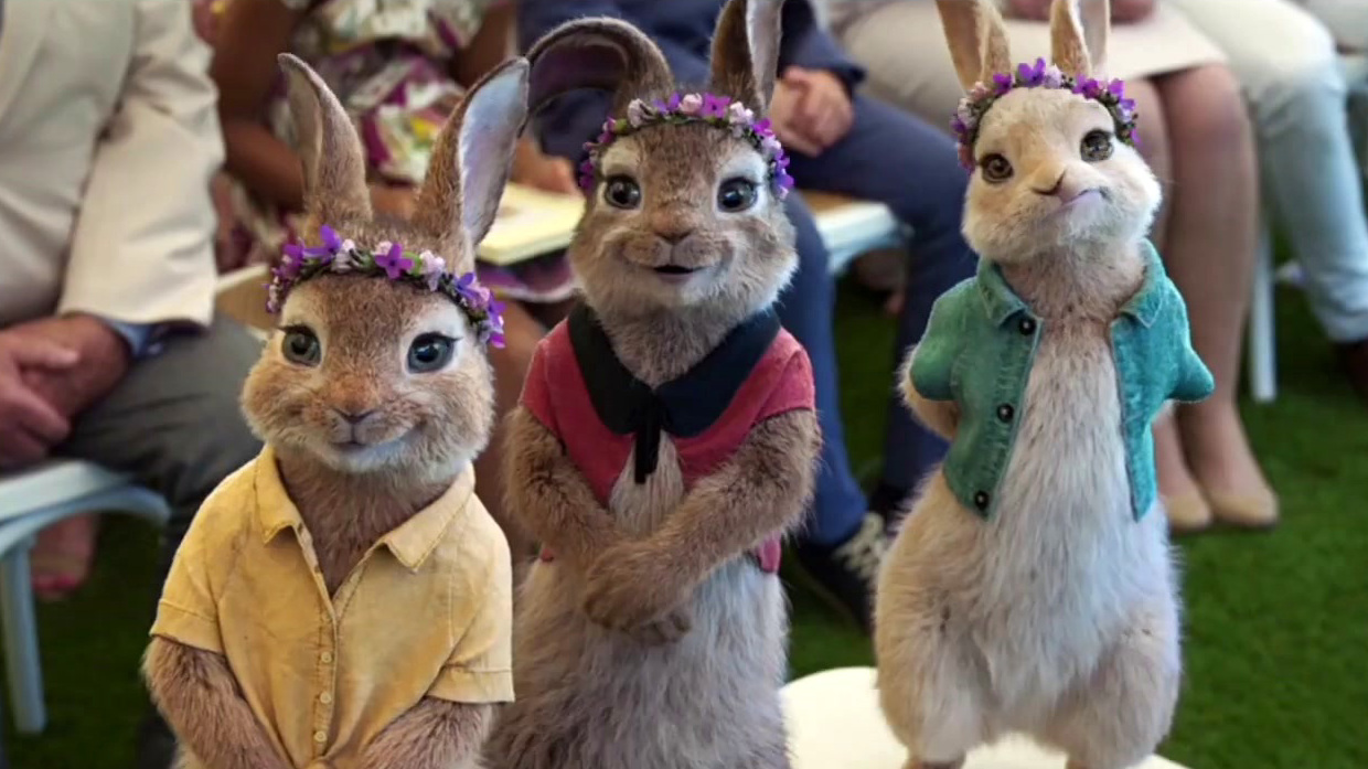 Peter Rabbit 2: The Runaway: The More Things Change (Vignette)