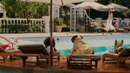 Beverly Hills Chihuahua: She's A Beverly Hills Chihuahua
