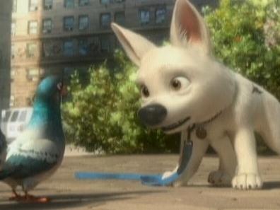 Bolt: Pigeonholing