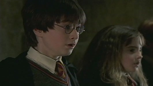 Harry Potter And The Sorcerer's Stone Scene: Fluffy